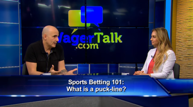 Sports Betting 101 What is a Puck Line